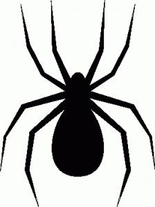 "Spider Fest ""Get Inspidered""- on Antelope Island"